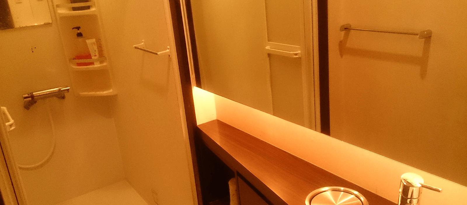 シャワールームはボディソープ・リンスインシャンプー・洗顔付き。大型の鏡とゴミ箱付きの棚もあるので身だしなみにも便利。